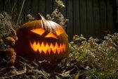 Halloween Jack O Lantern at night — Stock Photo