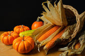 Corne d'abondance — Photo