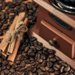 Coffee mill and cinnamon sticks — Stock Photo #20141119