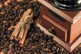 Coffee mill and cinnamon sticks — ストック写真