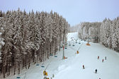 Winter snowy forest and a chairlift for skiers — Stok fotoğraf