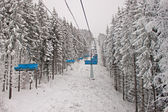 Chairlift in snowy forest — Stok fotoğraf