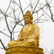 Stock Photo: Golden buddhstatue