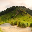 Mountain Road, Broga Hill — Stock Photo