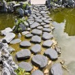 Stepping Stones — Stock Photo #35459743