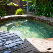 Stock Photo: Natural Hot Spring Jaccuzi, Malaysia