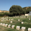 roche du Sphinx, gallipol, anzac cove — Photo #13329965