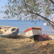 Stock Video: Fishing Boat, Dardanelles