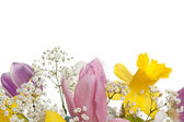 Cropped image of a flower bouquet — Stock Photo