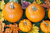 Cropped image of halloween pumpkins with autumn leaves — Stock Photo