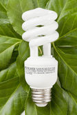 Florescent bulb in green leaves — Stock Photo
