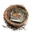 Image of nest with coins and paper currency — Stock Photo