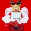 Постер, плакат: View of a rudolf the red nose reindeer in a gift box with a blan