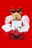 View of a rudolf the red nose reindeer in a gift box with a blan — Stock Photo