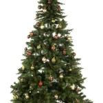 Full length christmas tree — Stock Photo