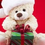 Themed teddy — Stock Photo