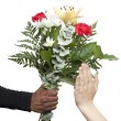 Stock Photo: Female hands refusing flowers