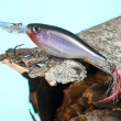 Fishing lure and wood - Stock Photo
