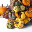 Stock Photo: Gourd cornucopia