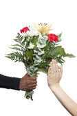 Female hands refusing flowers — Stock Photo