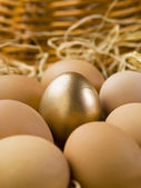 Gold eggs with brown eggs — Stock Photo