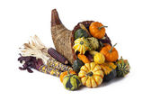 Gourds pumpkins and indian corn — Stock Photo