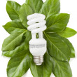Royalty-Free Stock Photo: Green eco energy concept