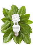 Green eco energy concept — Stock Photo