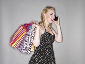 Gorgeous young lady with a shopping bag — Stock Photo