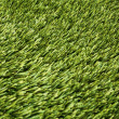 Fake grass - Stock Photo