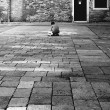 Child playing on streets of venice italy — Stock Photo #18324019
