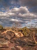 Monument valley in utah — Stock Photo