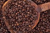 Bir kaşık kahve tohum — Stok fotoğraf