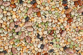 Assorted beans background — Stock Photo