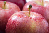 Close up image of red apple — Stock Photo