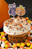 Decorative halloween cupcake — Stock Photo
