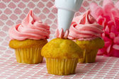 Icing bag decorating butter cream on cupcake — Stock Photo