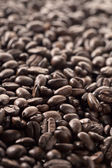 Illustration of coffee beans — Stock Photo