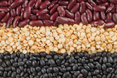 Macro shot of variety of food grains — Stock Photo