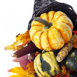Pumpkin and leaves — Stock Photo