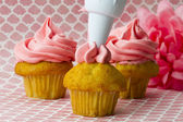 Image of an icing bag squeezing icing onto a cupcake — Stock Photo