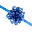 Blue bow in a close-up image — Stockfoto