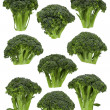 Broccoli Florets — Stock Photo #18742707