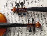 Two violins with sheet musics — Stock Photo