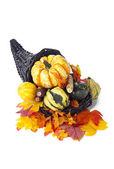 Fall decoration assortment — Stock Photo
