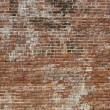 Old brick wall — Stock Photo #18753587
