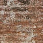 velha parede de tijolos — Fotografia Stock  #18753587