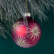 Close up shot of christmas bulb hanging on christmas tree - Stock Photo