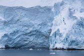 Ice glaciers in antarctic — Stock Photo