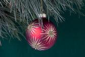 Close up shot of christmas bulb hanging on christmas tree — Stock Photo